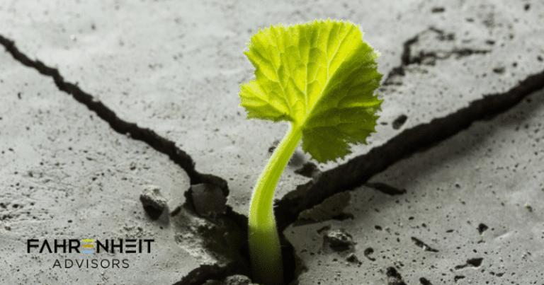 Organizational Resilience | Advisory | Fahrenheit Advisors